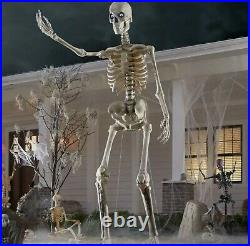 12 Ft. Giant Sized Skeleton Halloween Decoration Life Eyes Home Depot NEW IN BOX