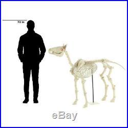 52 in. Standing Skeleton Pony with LED Illuminated Eyes Halloween Yard Decor