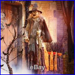 6 Ft Lunging Haggard Witch Animatronic Halloween Decoration Haunted House Prop