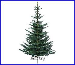 7 x 58 Everlands Layered Superior Nobilis Fir Artificial Christmas Tree Unli