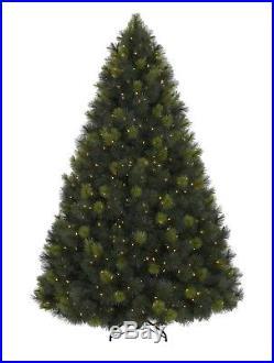 Balsam Hill Scotch Pine Pre-Lit Christmas Tree 6.5 feet