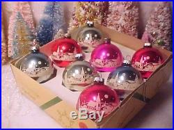 Box Matching Vtg SHINY BRITE Mercury Glass Village STENCIL Scene Xmas Ornaments