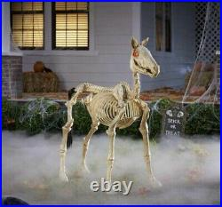 Halloween Horse 4 ft. LED Skeleton Pony By Home Accents Holiday Depot HTF SHIPS