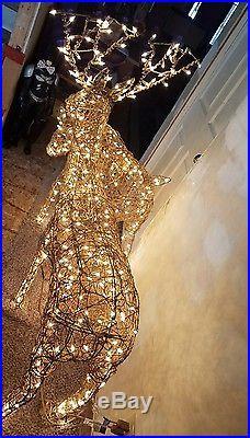 Illuminated Animated Grapevine Reindeer 48 Buck 42 Doe Christmas Holiday Decor