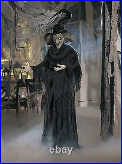 Life-Size Standing Wicked Witch in Pointy Hat Halloween Prop Lighted Eyes 6-Ft