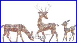 Lighted Outdoor Yard Christmas Holiday Decor Reindeer Figure Set Xmas Decoration