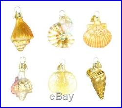 Old World Christmas Assorted Sea Shell Set of 6, 2 Glass Ornaments