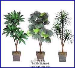 THREE 6′ Artificial Palm Tree Yucca Bird Nest Fan Palm Silk Plants, with No Pot