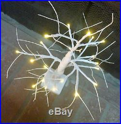 Table top white glittered birch 24 Christmas tree 20 light LED battery operated