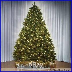 The 12′ Foot Worlds Best Douglas Fir Full Christmas Tree LED Clear White Lights
