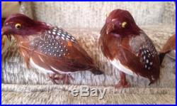 Vintage Pheasant Bird Ornaments 6 Lot Christmas Tree Feathers Holiday Decor Wire